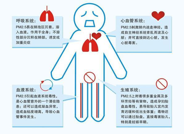 PM2.5对人体的危害
