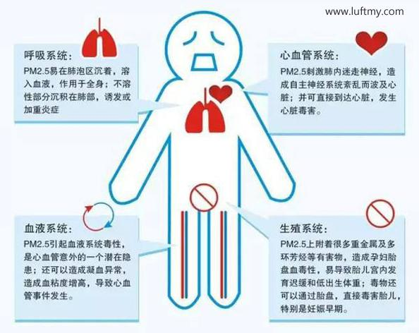 PM2.5对人体影响