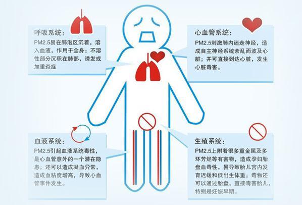 PM2.5对人体健康影响-勒夫迈LUFTMY