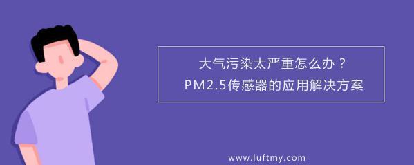 大气污染太严重怎么办?PM2.5传感器的应用解决方案-勒夫迈LUFTMY