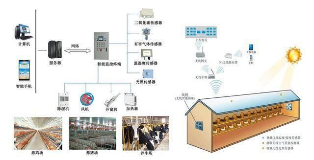 智能化养猪场的环境检测