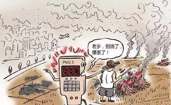 PM2.5传感器在秸秆焚烧监测